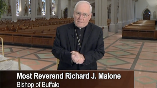 Bishop Richard Malone, of the Buffalo diocese, speaks during a segment of a child protection training video that's required viewing for all Catholic volunteers and employees.