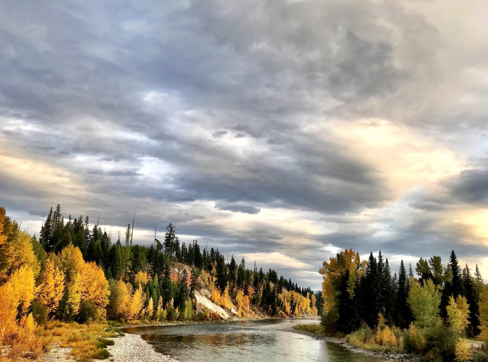 Fall colors along the North Fork of the Flathead at Glacier National Park