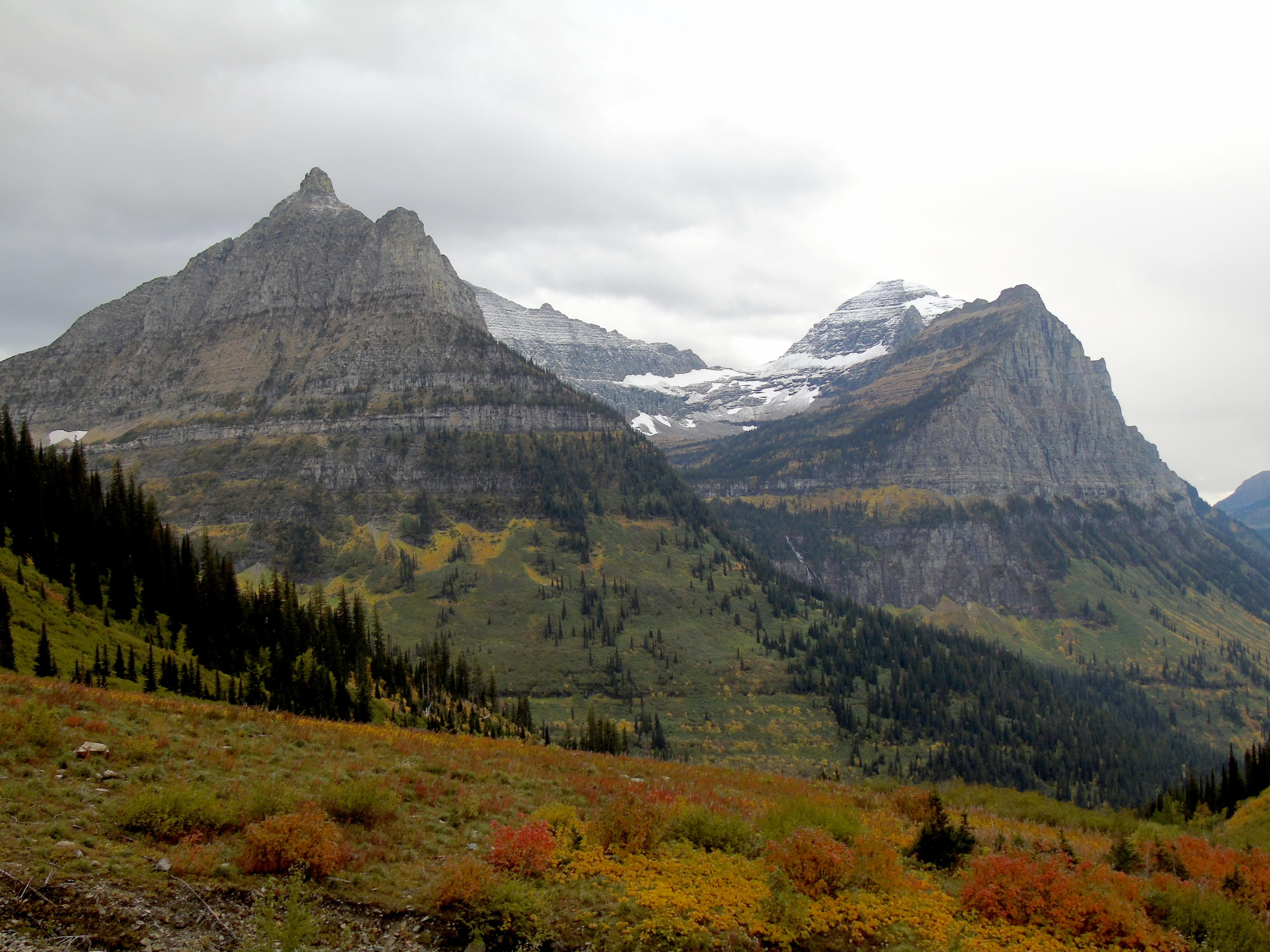 Fall colors along Going-to-the-Sun Road in Glacier National Park in late September.