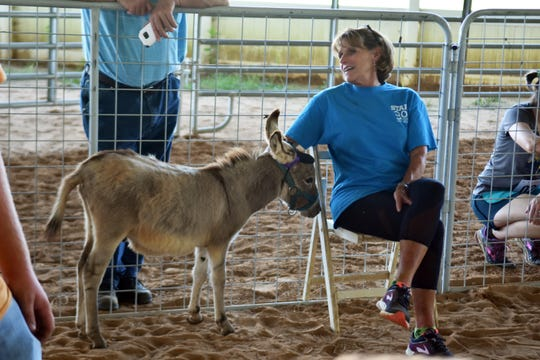 The petting area was a huge hit during the Run with Goats event at Shangri-La Therapeutic Academy of Riding on Sunday, Sept. 30, 2018.