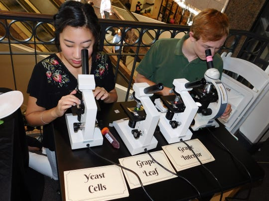 Take a look though your microscope to study the cells of wine at The Pink Palace's Science of Wine event on October 12.