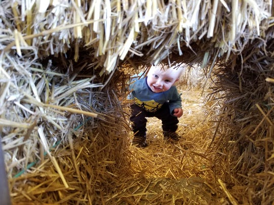 In addition to the corn maze at Schuett Farms, there's a straw bale maze for little ones.