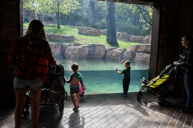 Nashville Zoo guests watch the Andean bears in the Exhibition Peru section of the zoo on Friday, Sept. 28, 2018.