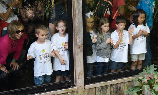 Children react as Prada, the Nashville Zoo's 8-foot alligator, is fed rats.