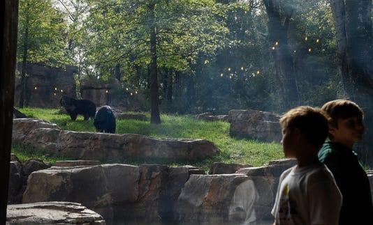 Nashville Zoo 13