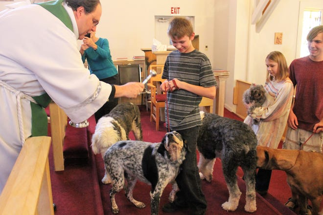 The Mauger family get their dogs blessed by Fr. John Onstott at St. John's Episcopal Church Sunday afternoon.