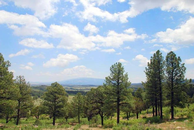The view from the Goodloe Ranch is stunning.