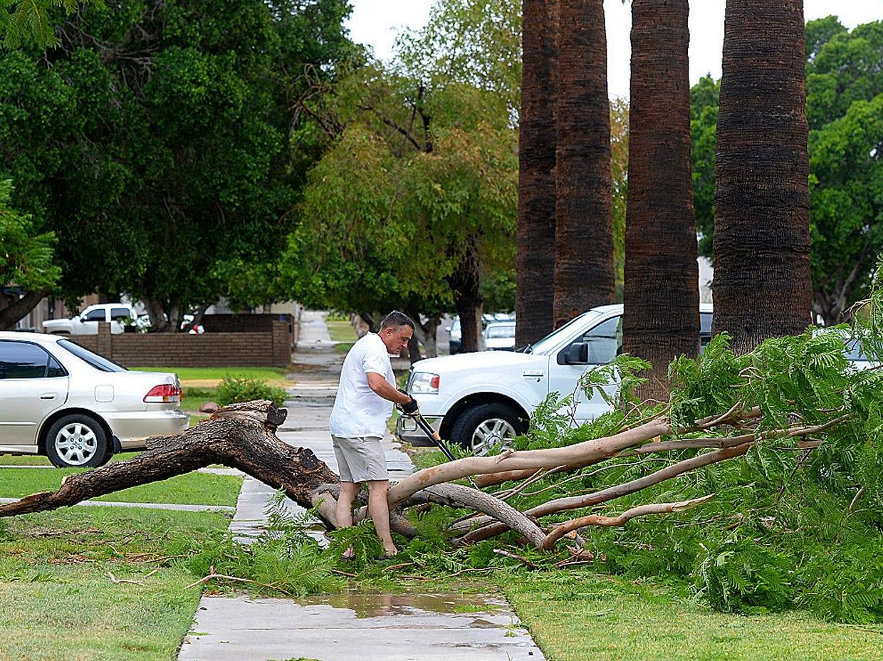 Rick Hirsch begins clearing a large piece of a Jacaranda tree in his front yard on Sept. 30, 2018 following an early afternoon rain storm.