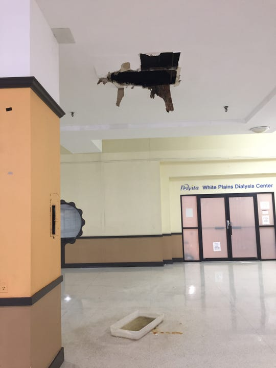 Ceiling damage, with mold, near the Dialysis Center at the White Plains Mall.