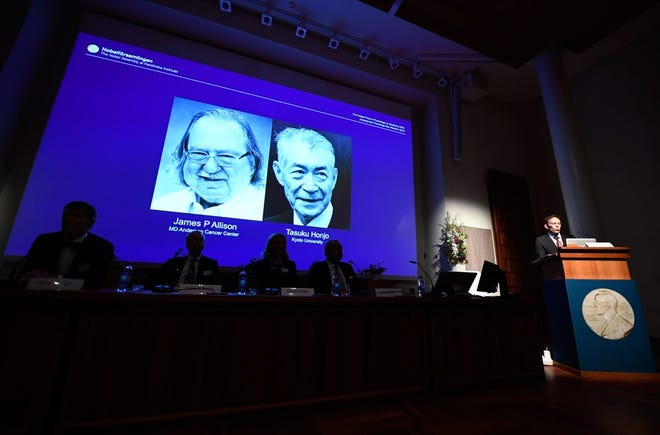 The winners of the 2018 Nobel Prize in Physiology or Medicine are shown during a during a press conference at the Karolinska Institute in Stockholm, Sweden, on October 1, 2018.