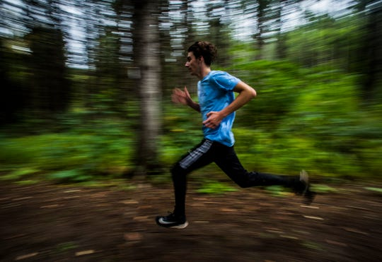 Arguably Vermont's best boys XC runner, junior Henry Farrington of Essex High School speeds through trails at the Essex Tree Farm during a team practice on Monday. Oct. 1, 2018.