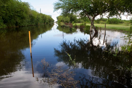 """A road is waterlogged in the Tierra Grande colonia is surrounded by water on Monday, October 1, 2018 from recent rains. """"The (Nueces County) Commissioners here need to understand this is human rights,"""" said Lionel Lopez, founder of South Texas Colonia Initiative. """"I wish the commissioners would stay here overnight and stay here and look at all of the mosquitoes. This is not normal."""""""