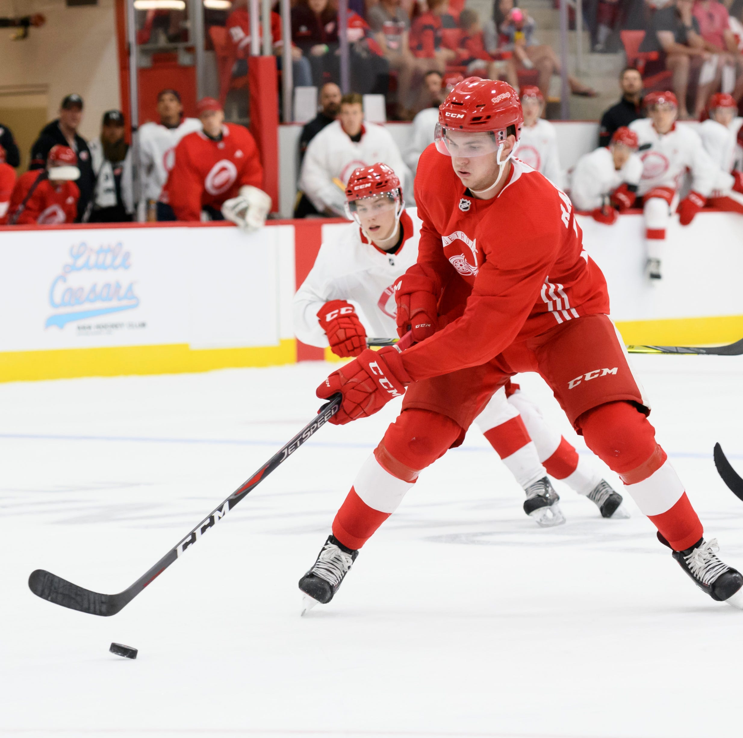 Rookie Michael Rasmussen continues to focus on sticking with Red Wings
