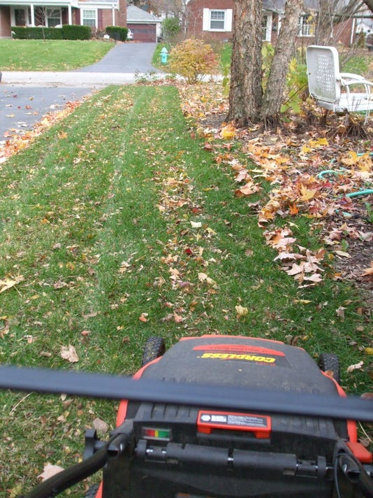 Leaves Mulch Mower Lawn