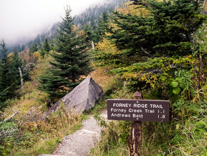 The trailhead for the Forney Ridge and Andrews Bald trails in the Great Smoky Mountains National Park on Tuesday, October 2, 2018.