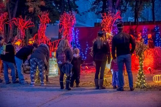 The Dancing LightShow will be in the Freaky Creaky Forest, which is located behind the Small Mammals Building.