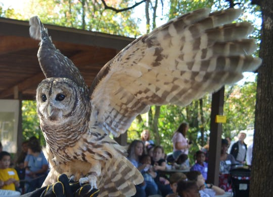 Real life animals like those in the Harry Potter series will be on exhibit during Harry Potter Night at the Montgomery Zoo.