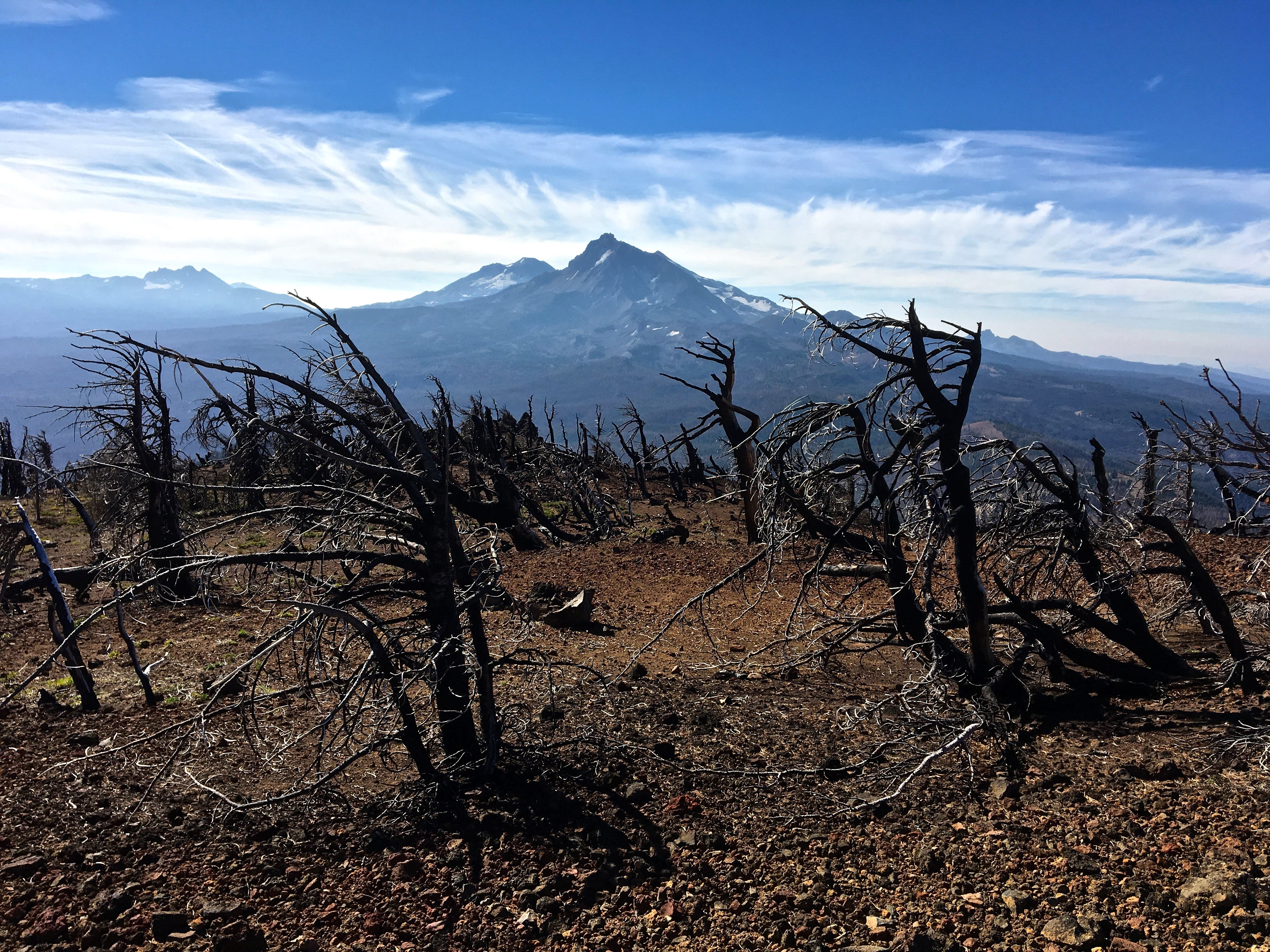 View of North and Middle Sister from top of Black Crater where the 2017 Milli Fire burned.