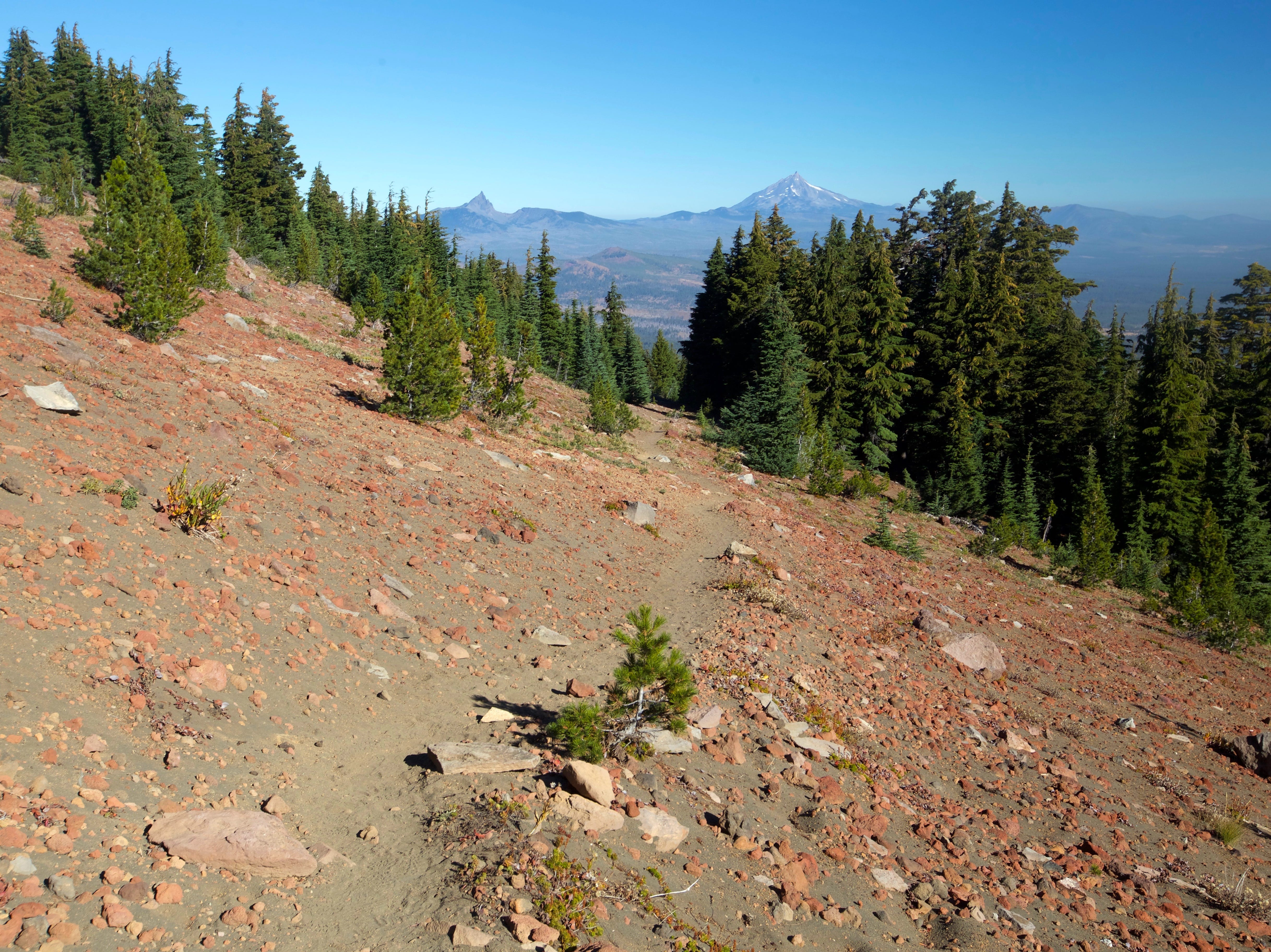 Upper views on Black Crater Trail west of Sisters.