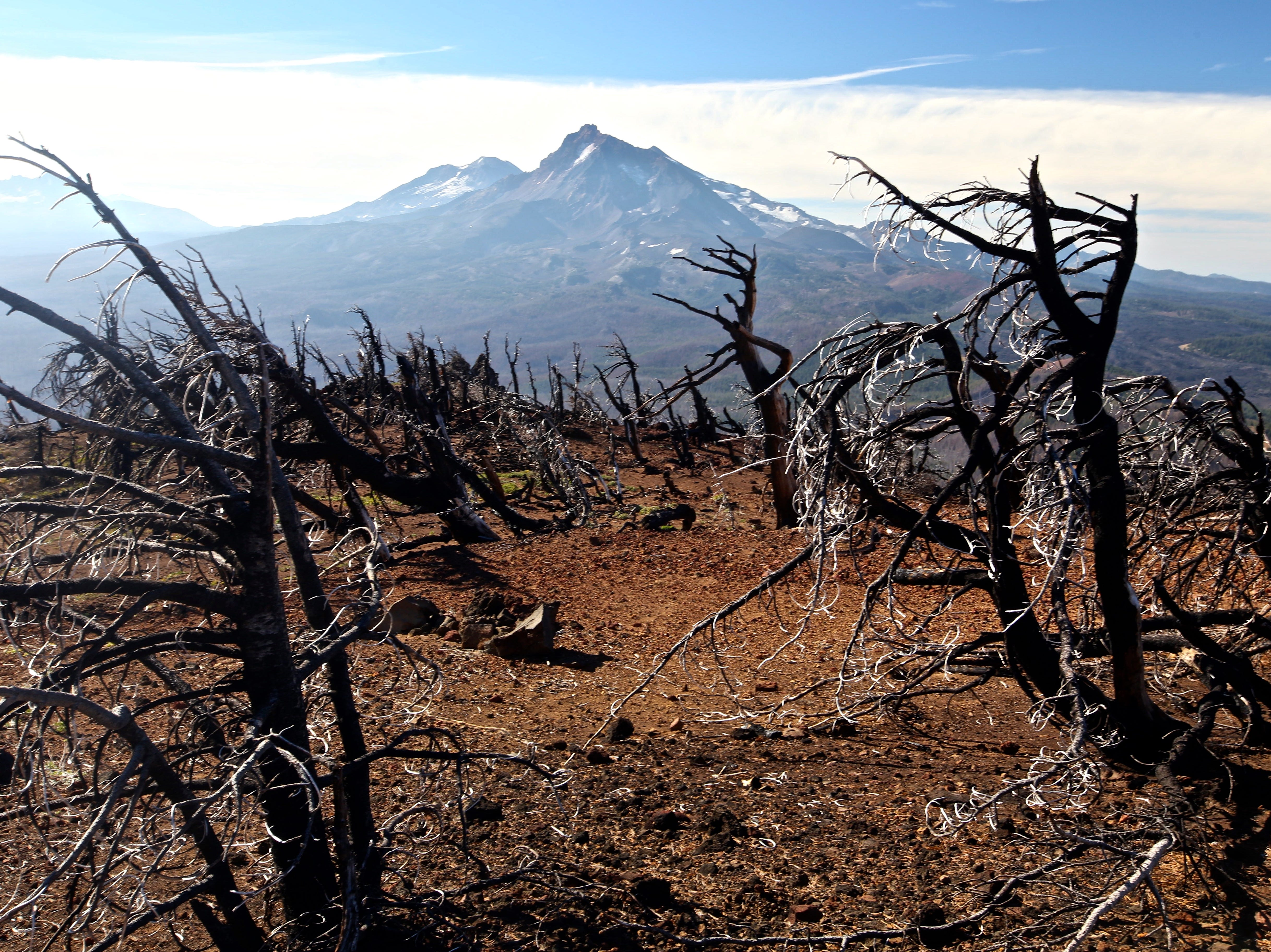 Views of North and Middle Sister through burned forest on Black Crater Trail.