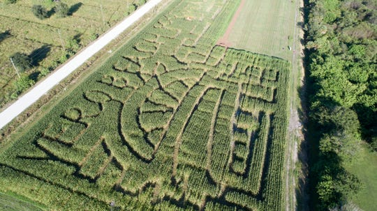 The 7-acre corn maze at Countryside Citrus in Vero Beach is open 10 a.m. to 5 p.m. every weekend through Nov. 4.