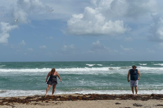 Red Tide Confirmed On St Lucie County Beaches Heading North