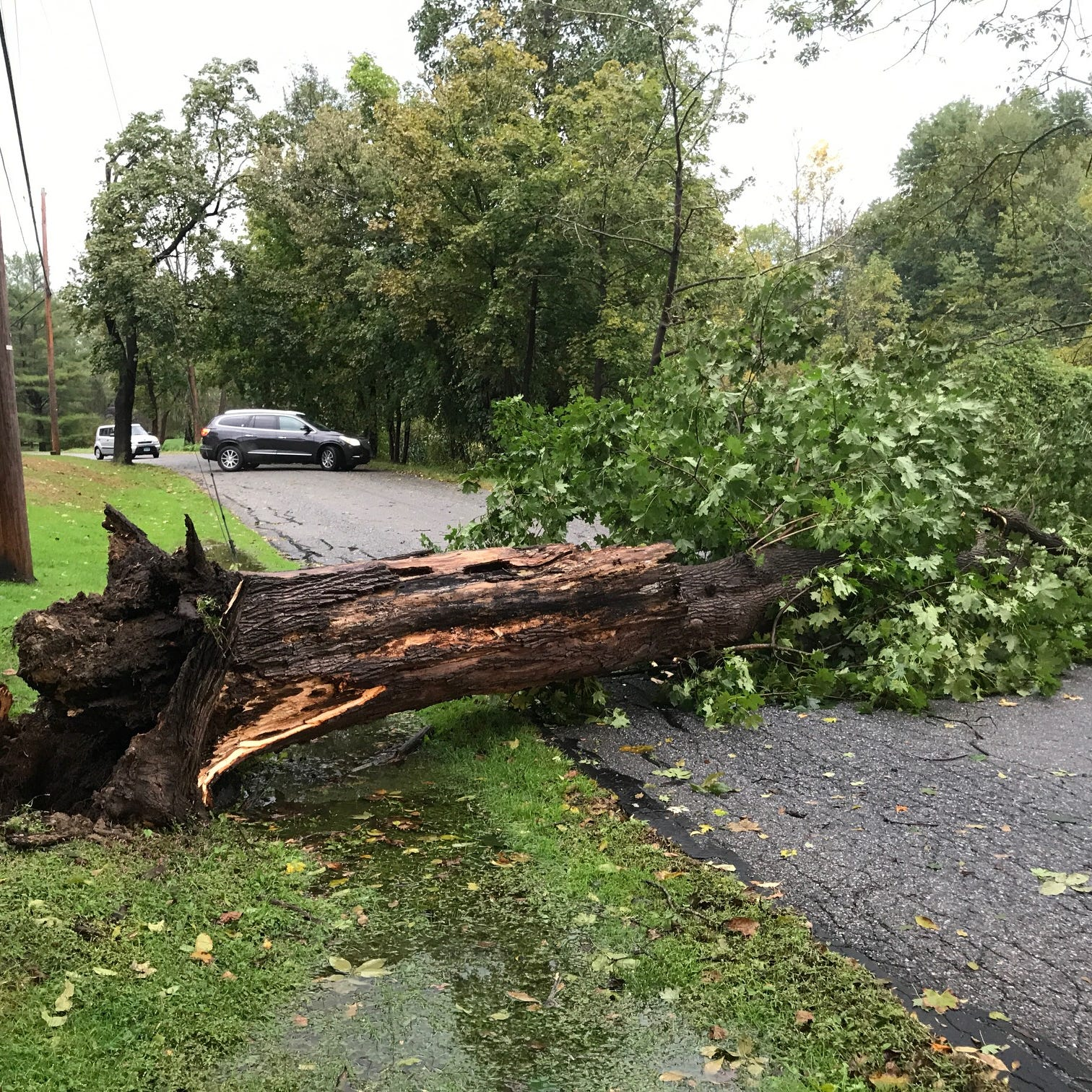 About 160 without power after Tuesday storms