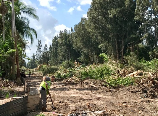 Ellis Road Land Clearing