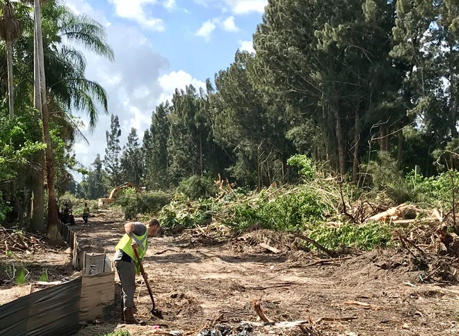 Workers and heavy equipment operators are clearing the forest off the western end of Ellis Road to construct a future Interstate 95 interchange.