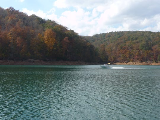 A shoreline at Norris Dam State Park.