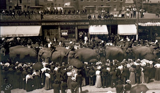 Ringling Brothers Circus elephants parade through a town in 1915.