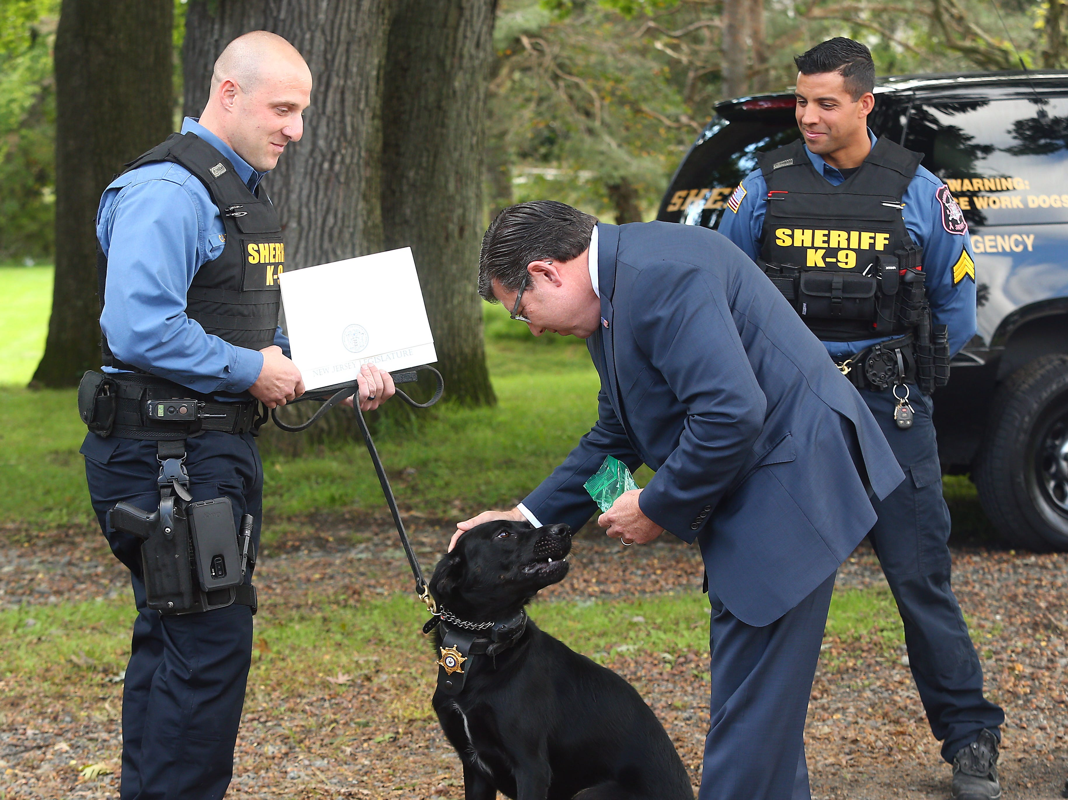 Assemblyman Anthony Bucco says hello to K-9 Boomer at the Morris County sheriff's office K-9 kennels in Parsippany. Boomer was found at a shelter, rescued and then trained as the sheriff's office's newest bomb sniffing dog. October 3, 2018, Parsippany, NJ