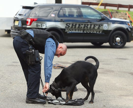 Handler Detective Mike Carbone with K-9 Boomer at the Morris County sheriff's office K-9 kennels in Parsippany. Boomer was found at a shelter, rescued and then trained as the sheriff's office's newest bomb sniffing dog. October 3, 2018, Parsippany, NJ