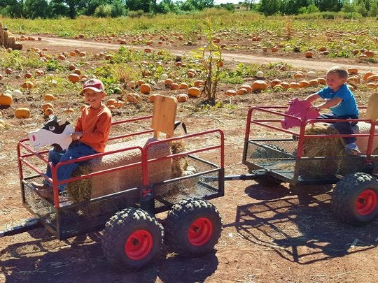 En el festival de otoño Willis Farm en Snowflake, hay diversión espeluznante y sin miedo para todas las edades.