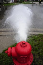 Water spews from a hydrant at Armour and Holland streets in Port Huron. City workers are flushing hydrants and water mains.