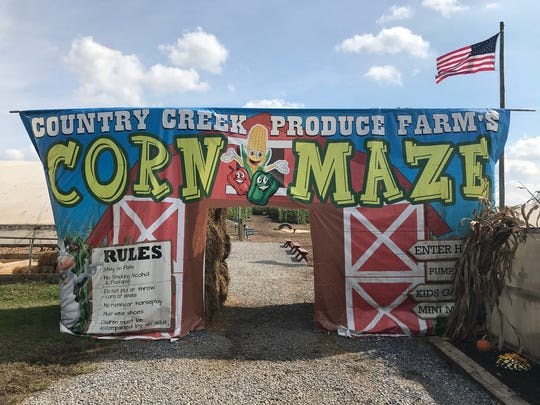 """The 2018 corn maze theme at Country Creek Produce, 3746 Etter Road, Chambersburg, is """"The Great Space Adventure!"""" Fall events including pick your own pumpkin, a petting zoo, playground, jump pad and pumpkin cannon are back this year. There's also a pick-your-own flower field. The season began on on September 22 and runs thru Nov 3."""