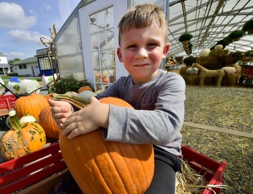 Cpo Mwd 100118 Corn Maze Pumpkin