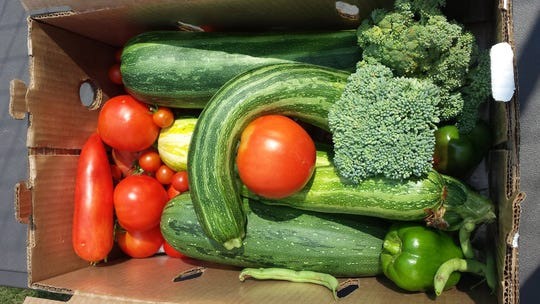 So far, about 250 pounds of produce, including eggplant, tomatoes and zucchini, have been donated to area food pantries from First Presbyterian's garden.