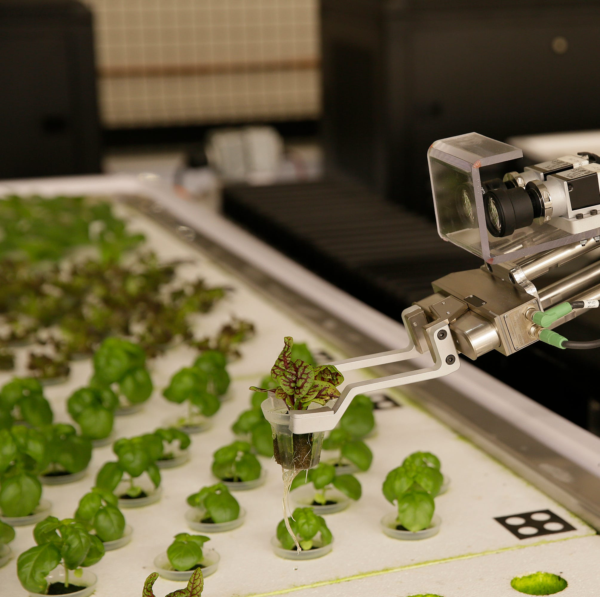 Meet America's farmers of the future: robots