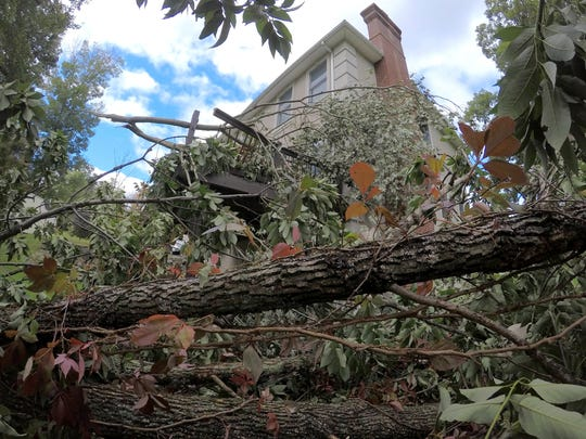 A tornado knocked down this tree and damaged a deck at Anthony Furia's Stony Point home Oct. 3, 2018.