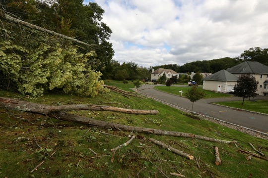 A tornado on Tuesday, Oct. 2, 2018, felled trees between the Palisades Parkway and Pierce Road in Stony Point. The damage is seen on Oct. 3, 2018.