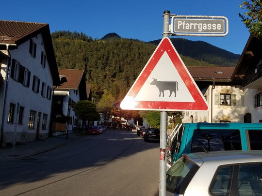 It is not uncommon to see cow-crossing signs in German communities like this one in Garmisch-Partenkirchen in South Bavaria.  Early on a Saturday evening a few cows made their way down a busy street on their way home.