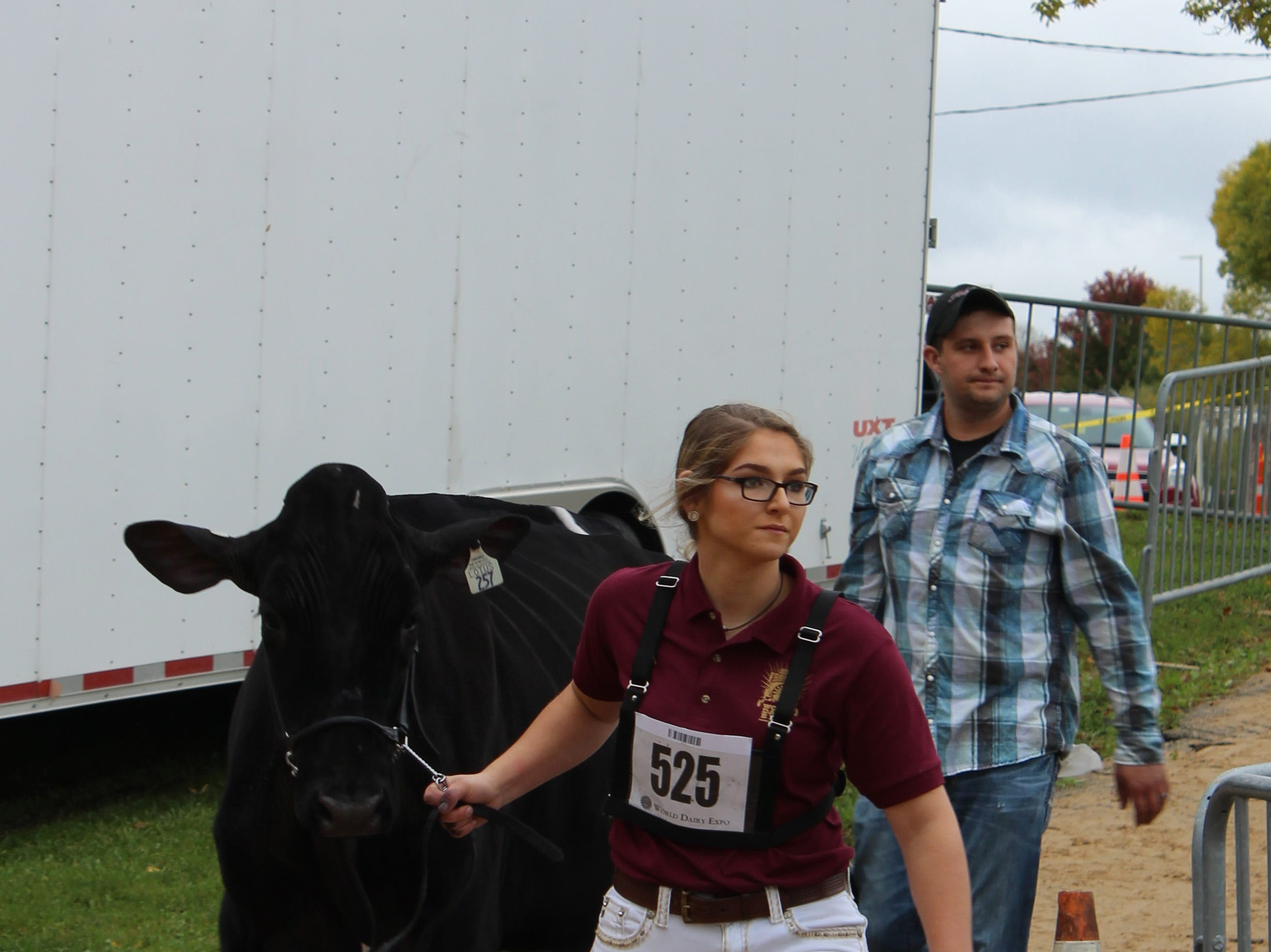 Hurrying to the show ring.