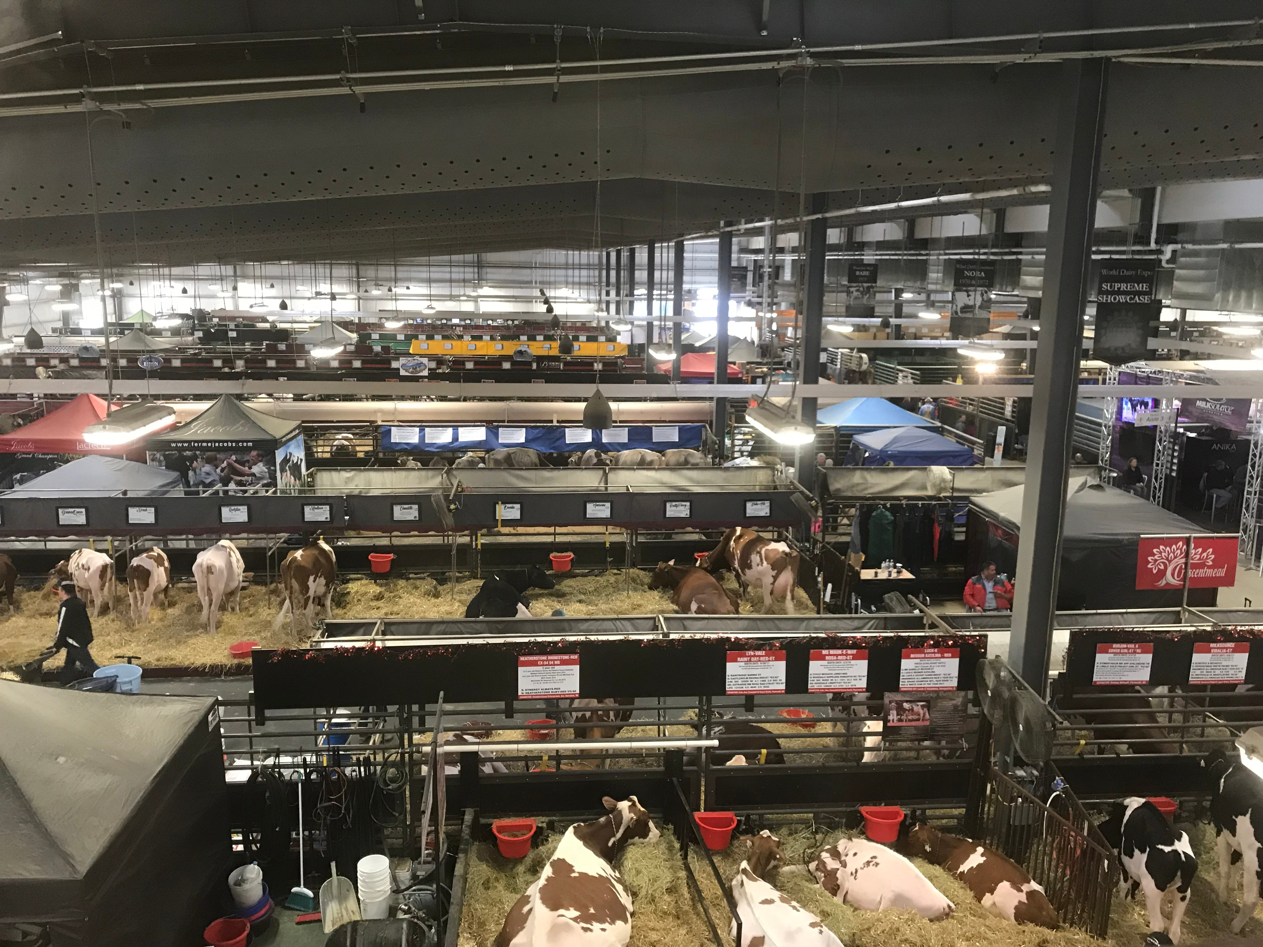 A birds-eye view inside the New Holland Pavilion.