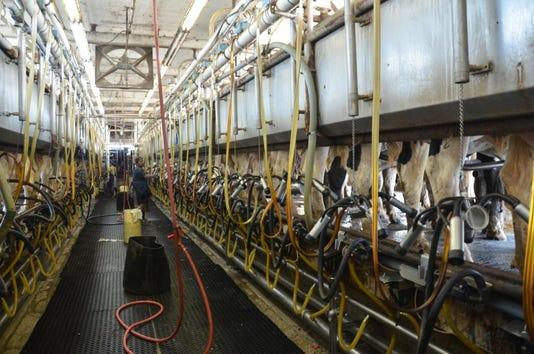 Dt Dairy Milk Parlor