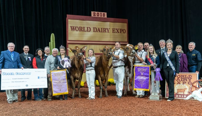 Palmyra Berkley P Ruth -ET took home three titles at the 2018 International Ayrshire Show at World Dairy Expo.