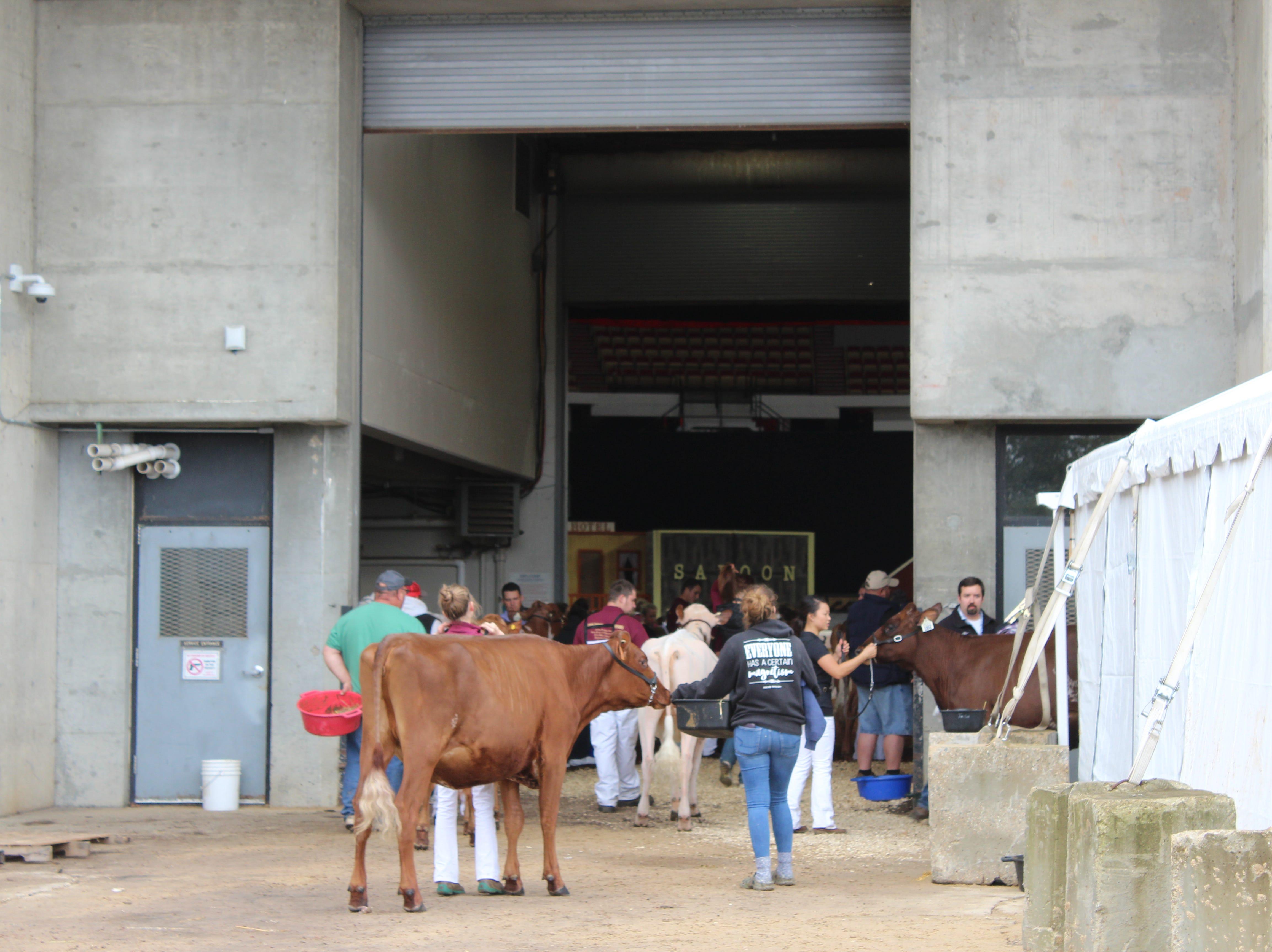 Entering the Coliseum.