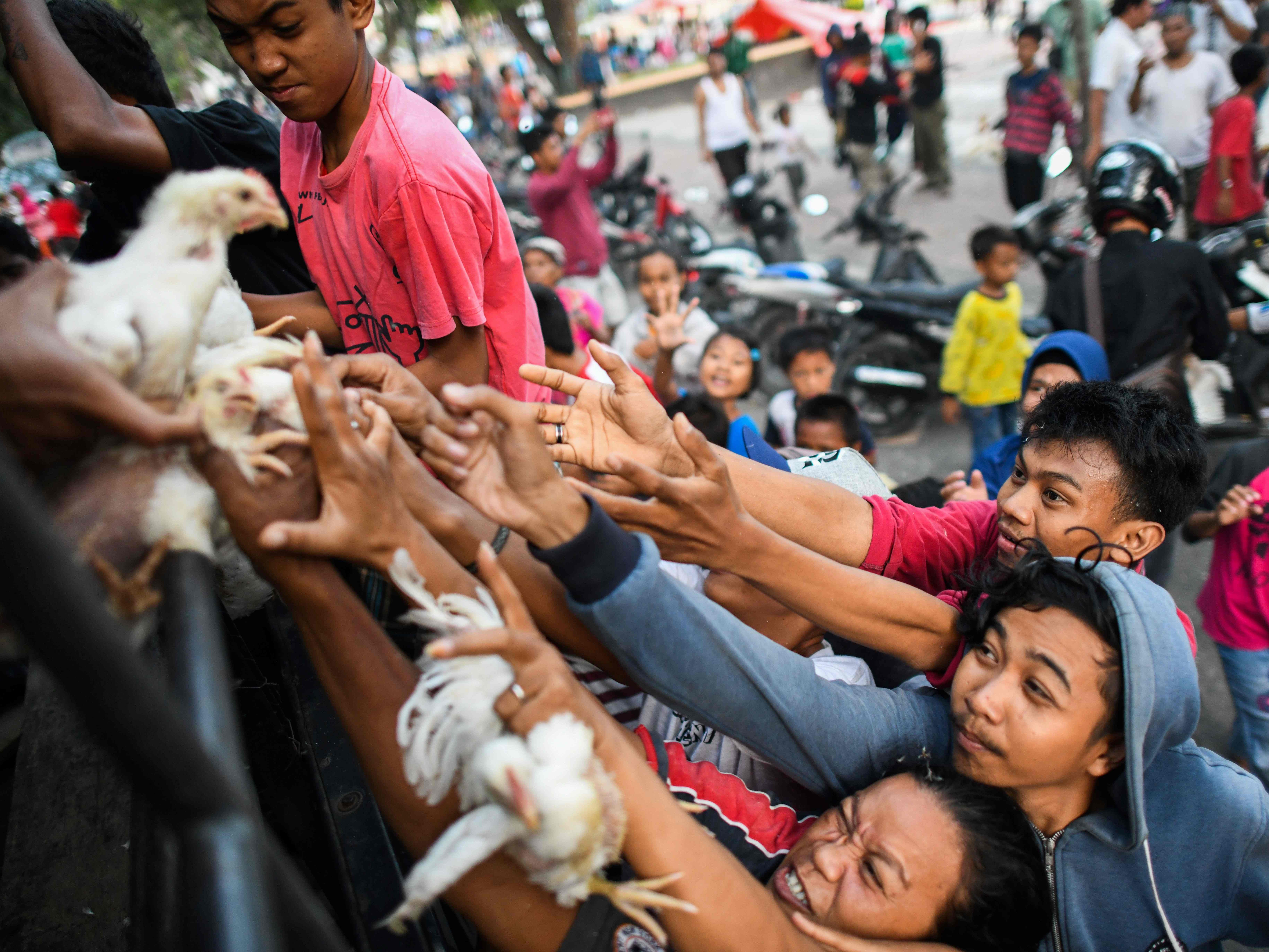 Earthquake survivors scuffle to get live chickens being distributed from a police truck outside a makeshift camp in Palu in Indonesia's Central Sulawesi on Oct. 2, 2018, after an earthquake and tsunami hit the area on Sept. 28. The Indonesian government said the death toll from a devastating earthquake-tsunami on the island of Sulawesi had risen to 1,234 people.