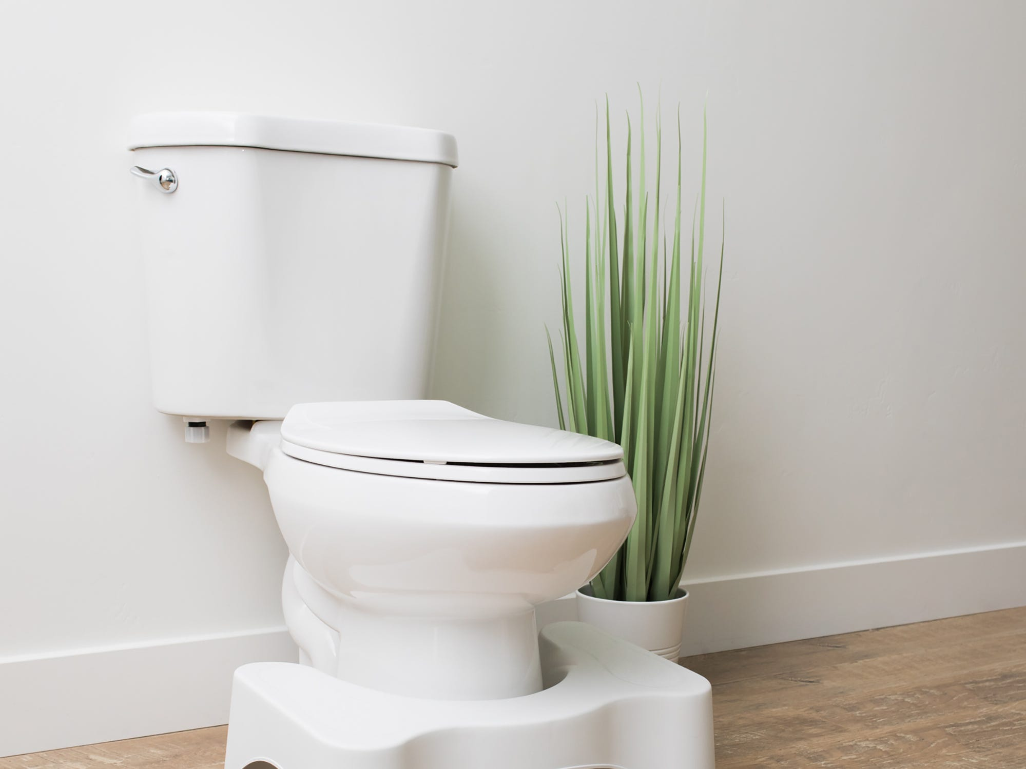 3. Squatty Potty What it is: Foot rest for toilet Pitched on: 11/14/14 Shark: Lori Greiner Offer/stake: $350,000/10% Sales: $140 million
