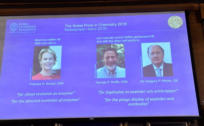 The 2018 Nobel Prize laureates for Chemistry.